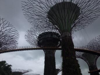 Singapore05