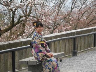 Cherryblossom_Kyoto_02
