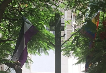 TelAviv_flag_asexual