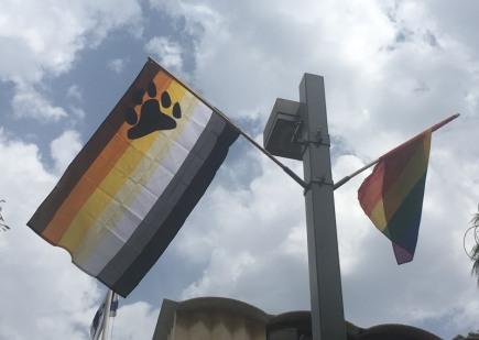 TelAviv_flag_bear