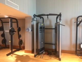 IC_O2_gym_weights