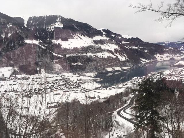 GoldenPass_Zentralbahn05_view
