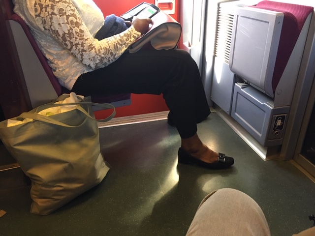 TGV_Atlantique_fildingchair