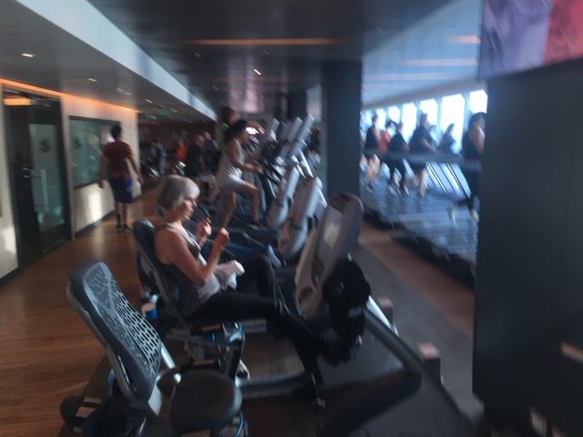 05_MajesticPrincess_gym