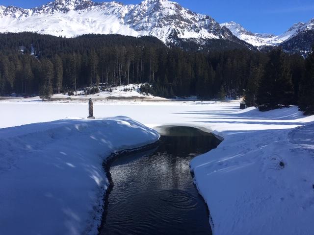 Valbella_Lenzerheide_06_river