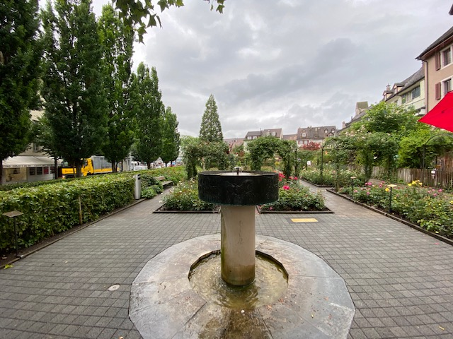 Rapperswil_rosegarden